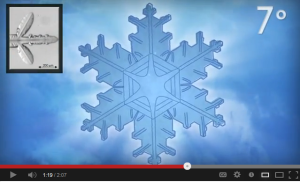Chemistry of Snowflakes