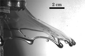 Liquid sheet resulting from squeezing a thin fluid layer. Image from Science Daily.