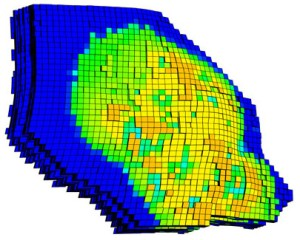 This oil saturation plot is an example of one new feature available in Tecplot RS 2014 R1. Image from Tecplot.