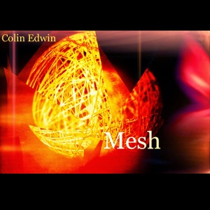 Mesh by Colin Edwin. Image from Colin Edwin's blog. See link above.