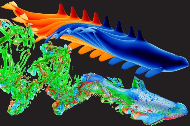 3D kinematics and unsteady wake structure of a fast swimming killer whale by Yan Ren. Image from Tecplot. See link above.